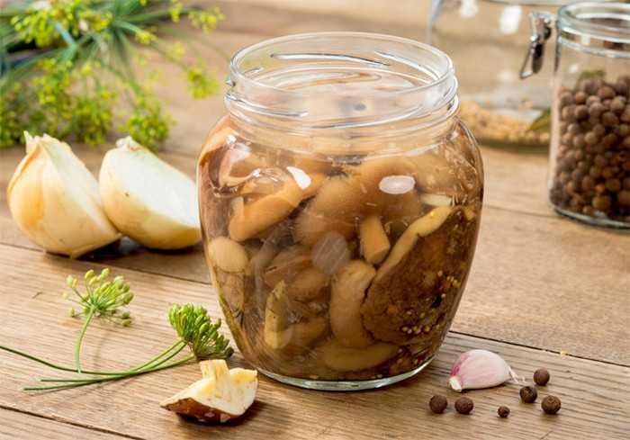 Как быстро и вкусно замариновать маслята на зиму
