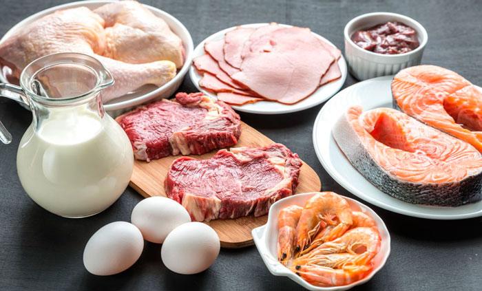 Последствия белкового питания