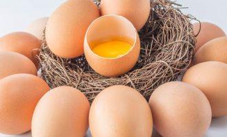 Как делают искуссвенные яйца