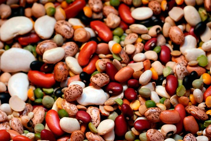 Как быстро сварить фасоль Разновидности фасоли
