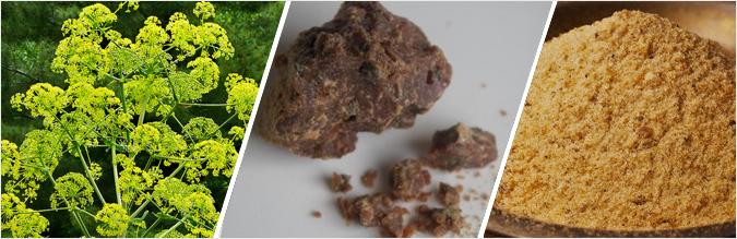 Что такое асафетида: полезные свойства и чем ее можно заменить