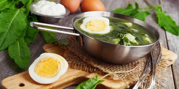 Что можно приготовить из щавеля: неожиданные блюда