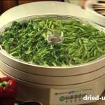 Дегидратор Ezidri ( Изидри — сушилка для овощей и фруктов)