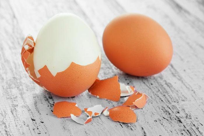 Изготовление яиц