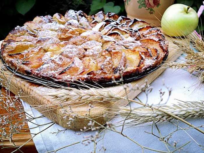 Домашние пироги с яблоками от Юлии Высоцкой