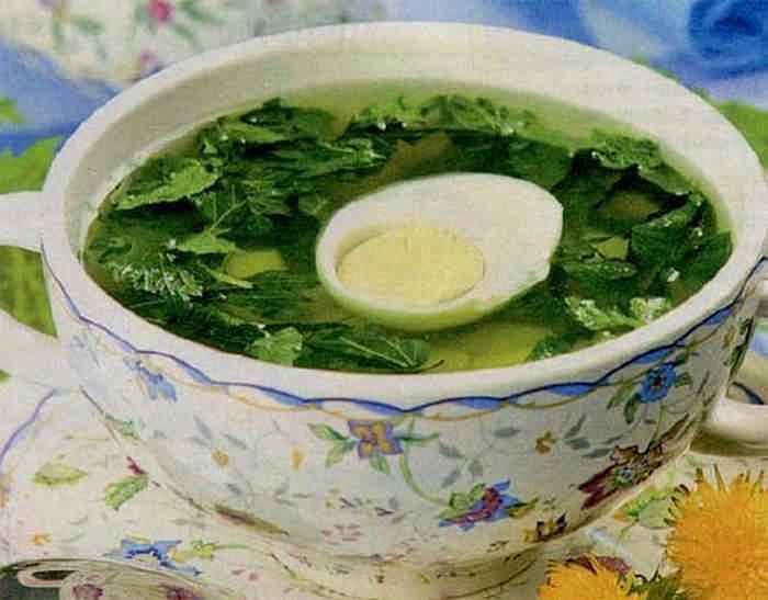Рецепты из крапивы на каждый день