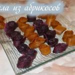 Пастила из абрикосов в сушилке Ezidri