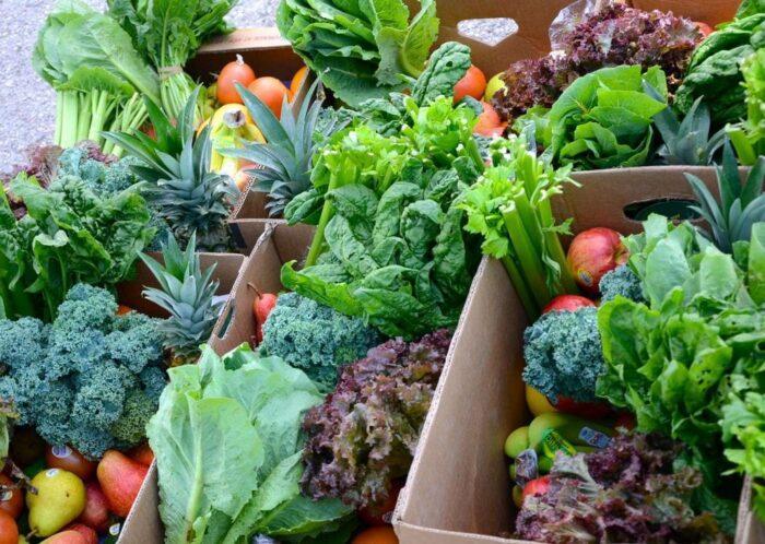 Сыроедение и рак — как питание влияет на оздоровление