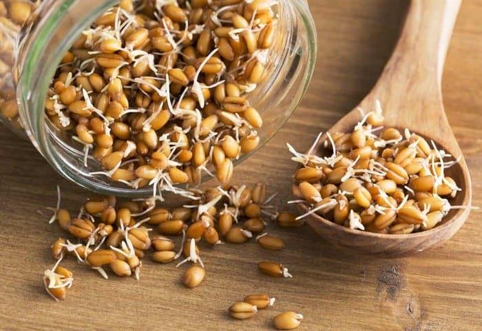 Как проращивать семена для еды